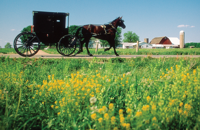 One of the Midwest's most popular group destination, Amish Country of Northern Indiana, blends backroads touring along the nationally recognized scenic 90-mile Heritage Trail with group exclusive cultural experiences.